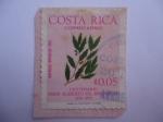 sellos de America - Costa Rica -  Quercus Brenessi Trel - Centenario del Nacimiento del profesor, Alberto ML. Brenes (1870-1970)