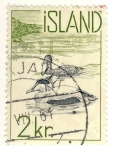 Stamps Europe - Iceland -  patos