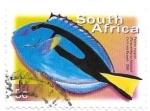 sello : Africa : Sudáfrica : fauna