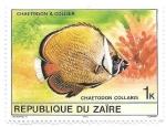 Sellos de Africa - República Democrática del Congo -  pez tropical