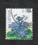 Stamps : Europe : Latvia :  957 - Anemonas azules