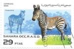 sello : Africa : Marruecos : cachorros