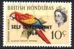 Stamps America - Belize -  AUTO  GOBIERNO  1964