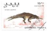 de Africa - Marruecos -  LAGARTOS