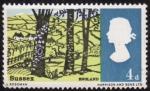Stamps United Kingdom -  Condado del sur de inglaterra( Sussex )