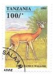 Stamps : Africa : Tanzania :  antílope