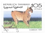 Stamps : Africa : Morocco :  lince