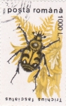 Stamps : Europe : Romania :  INSECTO