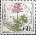 Stamps : Europe : Germany :  Scott#B591 , intercambio 0,75 usd. , 60+30 cents. , 1981