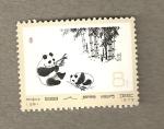 Stamps China -  Dos osos panda