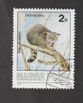 Stamps : Europe : Hungary :  Gato montés