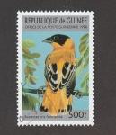 Stamps : Africa : Guinea :  Euplectes africana