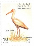 Stamps : Africa : Morocco :  aves