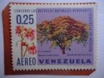 Sellos de America - Venezuela -  El Saman - Samanea Saman (Jacq)-Conserve los Recursos Naturales Renovables, Venezuela los necesita.