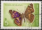 Sellos del Mundo : Europa : Rumania : Mariposa