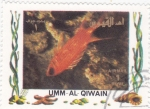 Stamps : Asia : United_Arab_Emirates :  PECES TROPICALES