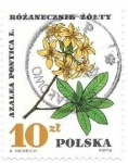 Sellos del Mundo : Europa : Polonia : plantas