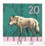 sellos de Europa - Polonia -  fauna