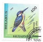 Sellos de Europa - Bielorrusia -  aves