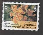 Stamps Cambodia -  Vandopsis gigaantea