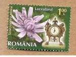 de Europa - Rumania -  INTERCAMBIO