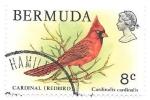 Sellos de America - Bermudas -  aves