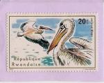 Sellos de Africa - Rwanda -  Pelicanos