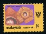 Stamps Asia - Malaysia -  sarawak