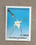 Stamps Madagascar -  Orquideas de Madagascar