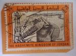 Stamps : Asia : Jordan :  El Reino Hachemita de Jordania -Proyecto del Canal EAST GHER - Obras Hidráulicas.