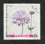 Stamps : Europe : Poland :  1642 - Flor