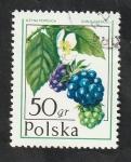 Stamps : Europe : Poland :  2316 - Frutos, Rubus caesius