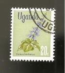 Sellos del Mundo : Africa : Uganda : FLORA