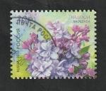 Stamps : Europe : Russia :  7913 - Flor de Rusia, Nadezhda, Syringa vulgaris