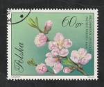 Stamps : Europe : Poland :  1982 - Flor, Prunus persica Batsch