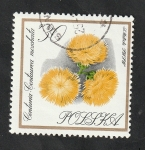 Stamps : Europe : Poland :  1548 - Flor de jardín, Centuria Centaurea moschata