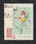 Stamps : Europe : Poland :  908 - Flor