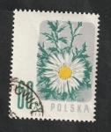 Stamps : Europe : Poland :  904 - Flor, Margarita