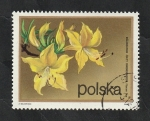 Stamps : Europe : Poland :  2063 - Rhododendron flavum don