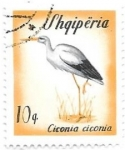 Stamps Albania -  aves