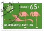 sello : America : Antillas_Neerlandesas : aves