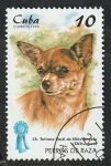 Stamps : America : Cuba :  3708 - Chihuahua, perro de raza