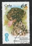 Stamps : America : Cuba :  3711 - Braco alemán, perro de raza