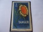 Stamps : Europe : Spain :  Tánger Beneficencia de los Huérfanos de Telégrafo-Ciudad de Tánger-Marruecos.Flora.