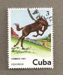 Stamps Cuba -  Equinos