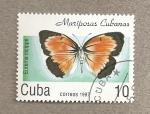 Stamps Cuba -  Mariposas cubanas Eurema nicippe