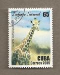Sellos de America - Cuba -  Zoologico nacional, girafa