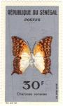 Stamps Africa - Senegal -  Mariposa