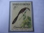 Stamps Venezuela -  Paraulata Llanera-(Sinsonte Tropical o Ruiseñor Tropical) Mimus gilvus.