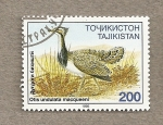 Stamps Asia - Tajikistan -  Ave